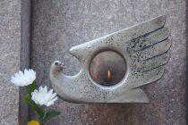 El Islam y la Paz